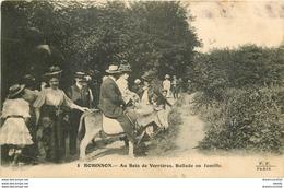 WW Lot 5 Cpa REGIONS DE FRANCE. Robinson ânes, Orléans, Thionne, Château De Lorge Et Issoire Gendarmerie - Cartes Postales