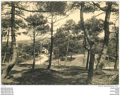 Photo Cpsm Cpm 44 LA BAULE - La Baule-Escoublac