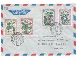Lettre Saint Pierre Et Miquelon 29-06-1973 Vers La Belgique - St.Pierre Et Miquelon