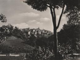 Cartolina - Postcard /  Viaggiata - Sent /  Capranica, Paesaggio.. ( Gran Formato )  Anni 50° - Italy