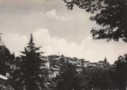 Cartolina - Postcard /  Viaggiata - Sent /  Capranica, Veduta. ( Gran Formato )  Anni 50° - Italy