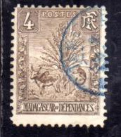 MADAGASCAR MALGACHE 1903 ZEBU, TRAVELER'S TREE AND LEMUR CENT. 4c USATA USED OBLITERE' - Madagascar (1960-...)