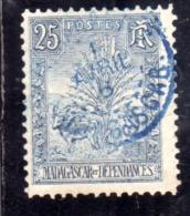 MADAGASCAR MALGACHE 1903 ZEBU, TRAVELER'S TREE AND LEMUR CENT. 25c USATA USED OBLITERE' - Madagascar (1960-...)