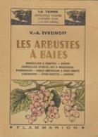 LA TERRE - Encyclopédie Paysanne - Les Arbustes à Baies De V.A. Evreinoff - 1944 - Ed. Flammarion - Encyclopédies