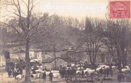 CPA PHOTO - 71 - CHATEAUNEUF - LA FOIRE AUX BESTIAUX (CHAROLAIS) - CARTE PHOTO RARE 1905 - - Francia