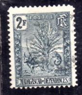 MADAGASCAR MALGACHE 1903 ZEBU, TRAVELER'S TREE AND LEMUR 2f USATO USED OBLITERE' - Madagascar (1960-...)