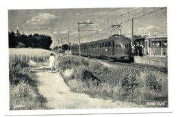 Soest Zuid Station Gare Electric Train Trein Spoorweg Railway Eisenbahn 1950's - Niederlande