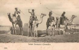 Soldats Soudanais à Dromadère... - Sudan