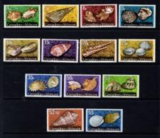 SAINT  VINCENT  AND  GRENADINES    1974    Shells   With  Imprint  Date     Set  Of  13    MNH - St.Vincent & Grenadines