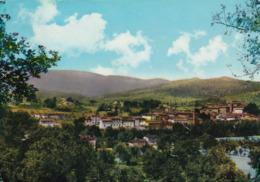 Cartolina Di Ambra ( Arezzo ) Panorama - Arezzo