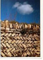 Pierre RICOU Provence 1990 Mur En Epis Dans Le Luberon - Other Photographers