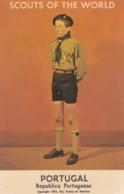 Scouts Of The World Series, Portugal Boy Scout Uniform C1960s Vintage Postcard - Scoutismo