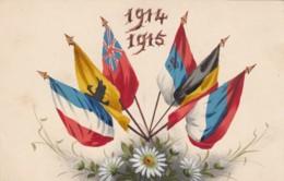 Allied Flags 1914-1915 Artist Image Patriotic, C1910s Vintage  Postcard - War 1914-18