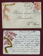 MIRECOURT  (88)  : LETTRE Avec ALGUES MARINE De PARAME  1904 - Postmark Collection (Covers)