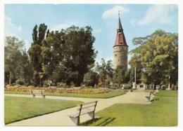 Kitzingen Am Main - Rosengarten Am Falterturm - Kitzingen