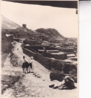 ALGERIE AURES KHANGA SIDI NADJI 1923 Photo Amateur Format Environ 7,5 Cm X 5,5 Cm Tirage Années '30 - Orte