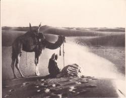 ALGERIE SAHARA  1923 Photo Amateur Format Environ 7,5 Cm X 5,5 Cm Tirage Années '30 - Orte