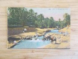 CPA.- Un Barrage Sur L'Oued - Tunisie