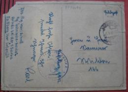 Feldpost: Ansichtskarte (Katze In Dose Mit Aufschrift Express) Von Flieger-Technische-Schule 2 In Faßberg Nach Wildon - Storia Postale