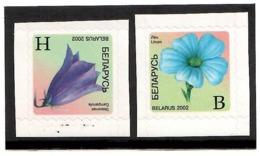 Belarus  2002 .Definitives 2002 (Flowers). 2v: B,H -self Adhesive.  Michel # 455-56 - Bielorussia