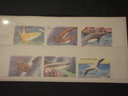 ANTIGUA - 2001 FAUNA MARINA 6 VALORI - NUOVI(++) - Antigua E Barbuda (1981-...)