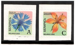 Belarus  2002 . Definitives 2002 (Flowers). 2v: A,C -self Adhesive.   Michel # 462-63 - Bielorussia