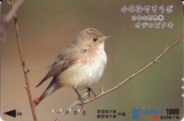 JAPON. Billete De Transporte. AVE - BIRD. JP-BI-044. (168) - Transporte