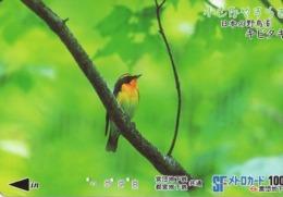 JAPON. Billete De Transporte. AVE - BIRD. JP-BI-041. (171) - Transporte