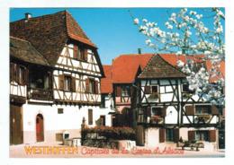 23892  CPM WESTHOFFEN  : Fête Des Cerises !! 3ème Dimanche De Juin ( Capitale De La Cerise D' Alsace ) Jolie Carte !!! - Francia