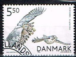 DANEMARK /Oblitérés/Used/ 2004 -  Oiseaux / Rapaces - Danimarca