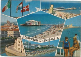 Z5253 Souvenir Di Senigallia (Ancona) - Ragazza Girl Femme Frau Chica Pin Up / Viaggiata 1979 - Pin-Ups