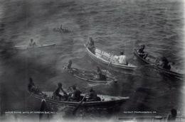 Saint Pierre Eruption Du Mont Pellee 8 Mai 1902 Nuee Ardente Avant Diving Boys 20(scan Recto-verso) MA1090 - Autres