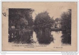 DA15- 45) LA SELLE SUR LE BIED (LOIRET) LES BORDS DU BIED LA FOSSE BASSET  - (2 SCANS) - France