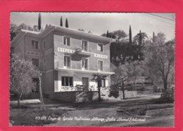 Modern Post Card Of Stella Alpina,Lago Di Garda,ItalyA26. - Italy