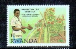 Rwanda - 1399 - Végétaux - 1993 - MNH - Rwanda