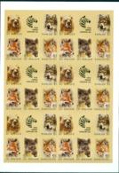Russia, SU, Soviet Union Zoo 1988, Animals , Imperforated SHEET !!!! - 1992-.... Federación