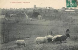 CPA 50 Manche Beauchamps Vue Générale Bergère Troupeau Moutons - France
