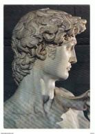FIRENZE:  GALLERIA  DELL' ACCADEMIA  -  IL  DAVID  DI  MICHELANGELO  -  FOTO   -  PER  LA  SVIZZERA  -  FG - Musei