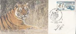 India  2013  Big Cats Felines  Tigress Machhli  Ranthambore Tiger Reserve Special Cover   #  23984  D  Indien Inde India - Big Cats (cats Of Prey)
