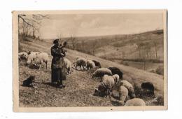 En  Perigord  -  Une  Vieille  Bergère - Folklore