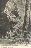 Antieke Cpa 1905 Petite Suisse Luxembourgeoise.- Halsbacherthal. Le Passage De Schipka - Echternach
