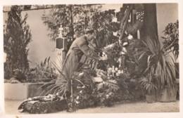 CPA - Hitler Sur La Tombe De Ses Parents - Nach Vielen Jahren Konnte Der Fürer Wieder Am Grabe Seiner Eltern Verweilen - Weltkrieg 1939-45