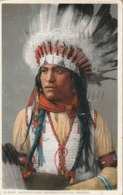 INDIEN - INDIAN -  Indien Apache Jicarilla - Bufalo Calf - Autres Thèmes
