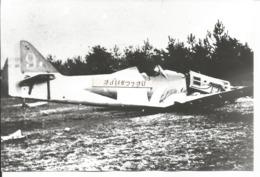 PHOTO AVION DEWOITINE D500  CRASH          17X11CM - 1946-....: Era Moderna