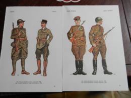1) DIVISA MILITARE GERMANIA GRAN BRETAGNA FRANCIA ITALIA BELGIO AUSTRIA UNGHERIA POLONI RUSSIAEcc LOTTO DIVERSO - Uniformes