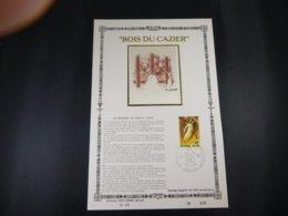 """BELG.1981 2018 FDC Philacard (FR) Soie /lettres D'or /tirage Limité : """" Coal Mine Disaster Bois Du Cazier Marcinelle """" - 1981-90"""
