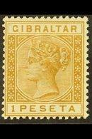 1889-1896 1 Peseta Bistre, SG 30, Fine Mint For More Images, Please Visit Http://www.sandafayre.com/itemdetails.aspx?s=6 - Gibilterra