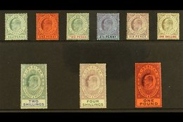 1904-08 KEVII Definitive Set, SG 56/64, Some Tiny Imperfections, Generally Fine Mint, The £1 Value Is Superb With Virtua - Gibilterra