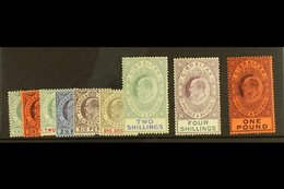 1904-08 King Edward VII Watermark Multi Crown CA Complete Definitive Set, SG 56/64, Very Fine Mint. (9 Stamps) For More  - Gibilterra