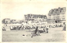 Coq S/Mer - La Plage - De Haan